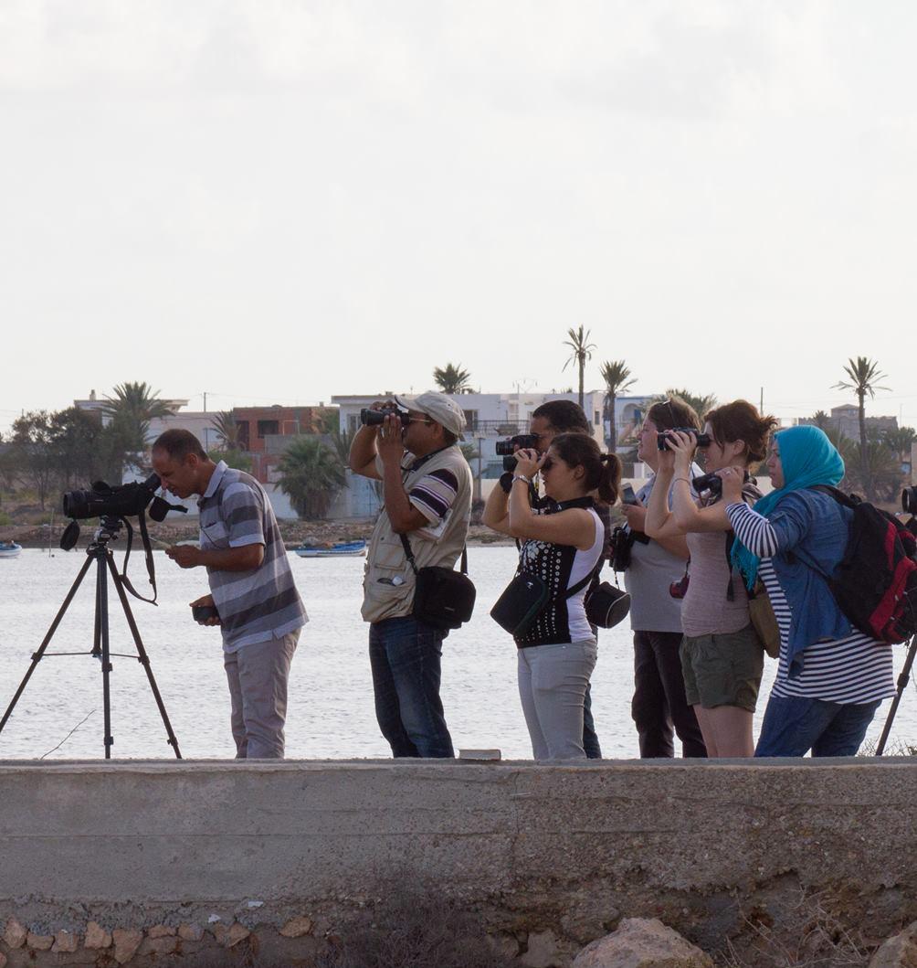 Présentation de  l'AAO / BirdLife Tunisie